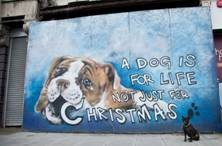 Dogs Trust celebrates 35 year of 'A dog is for life' slogan with